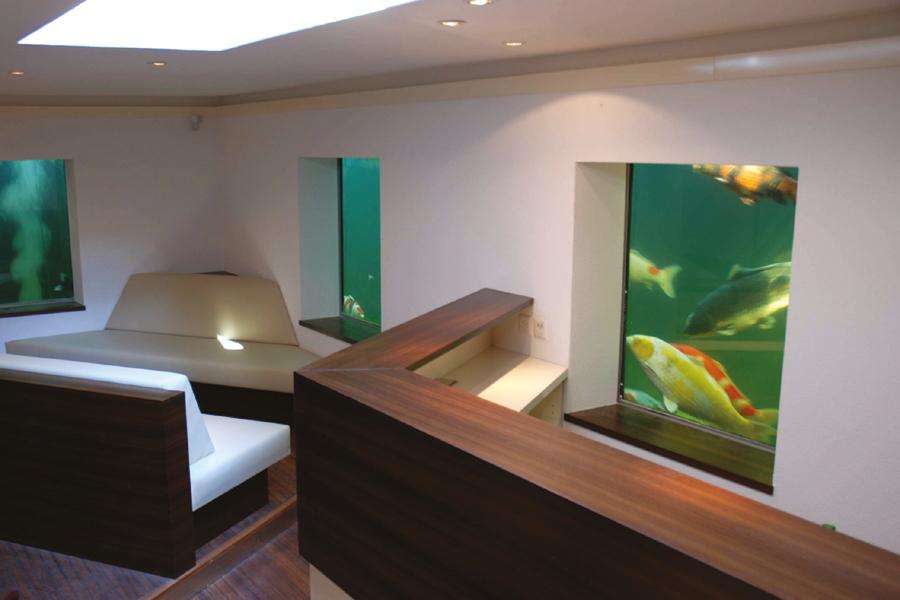 Favorit Das Koi-Aquarium: Der etwas andere Koi-Teich   Koinet GmbH HY35
