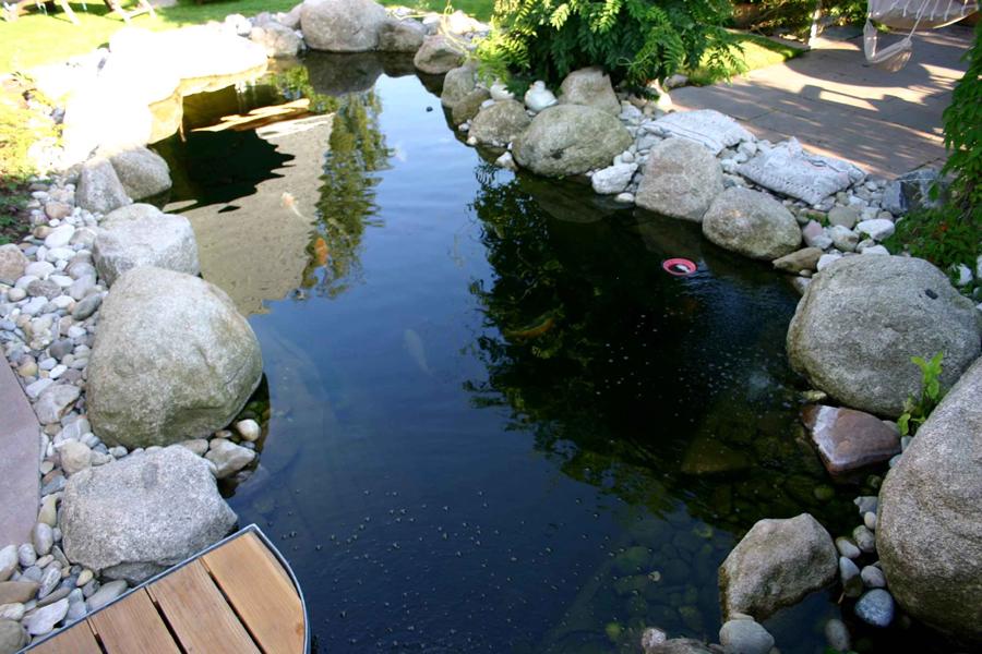 Wie Baue Ich Einen Koi Teich Konzeption Lage Technik