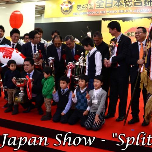 Die letzten Show-Splitter…