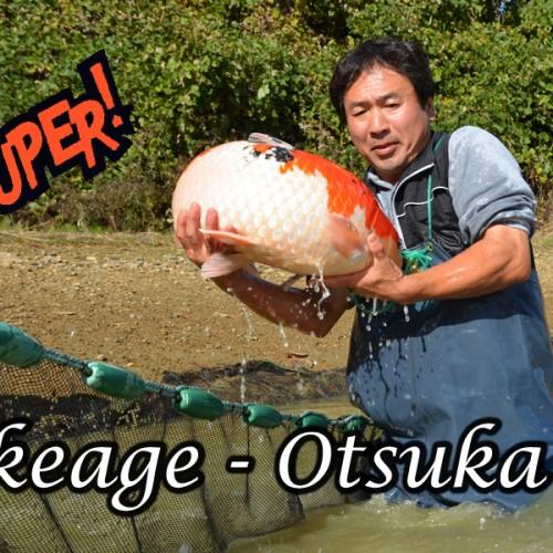 Abfischen mit Otsuka