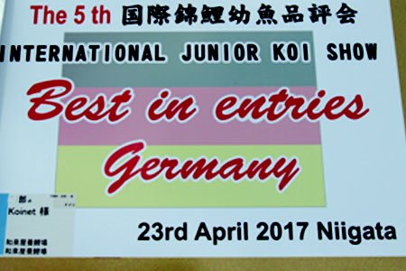 5th International Junior Koi Show Niigata