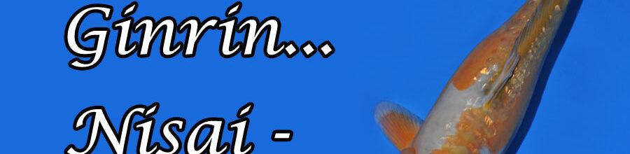 Doitsu Ginrin Nisai-Mix