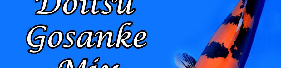 Doitsu Gosanke-Mix