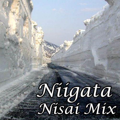 Niigata Nisai Mix