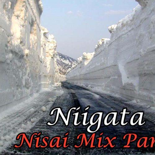 Niigata Nisai Mix – Part 2