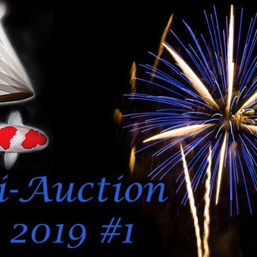Koi-Auction 2019 #1