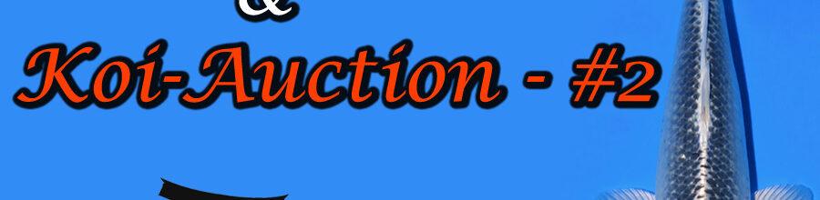 Koi-Auction #2 / Tancho-Mix