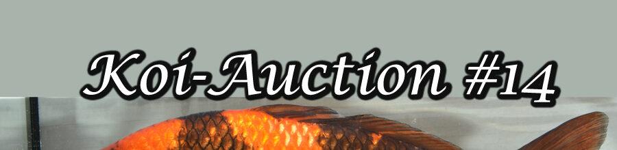 Koi-Auction #14 / Koi-Pate Part 3