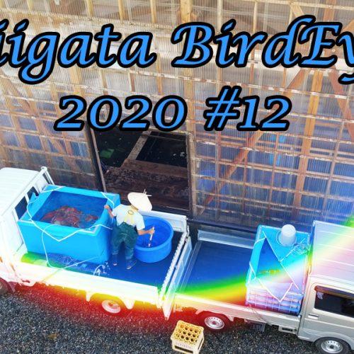 Niigata aus der Vogelperspektive | 2020#12