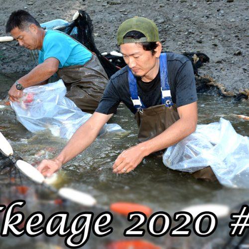 Ikeage 2020 #1