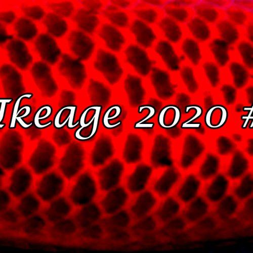 Ikeage 2020 #13