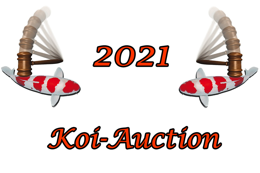 Koi_Auction_2021